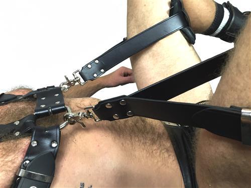 Bulldog with Sling Stirups B