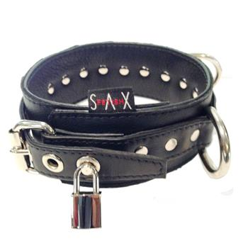 Collar 3D Garment Black Locking_350