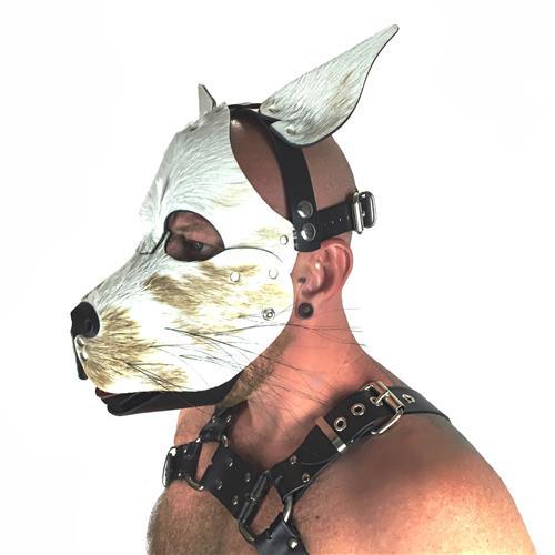 Hound-Puppy-Head-Harness-Side