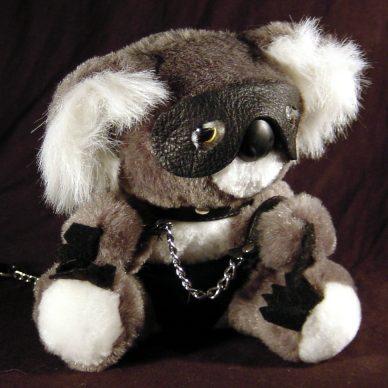 koalaboy